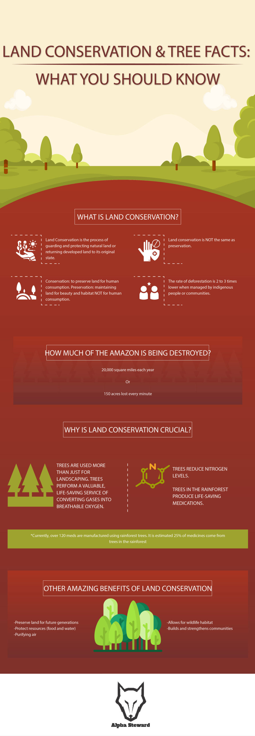 Wildlife/Forest Conservation Infographic